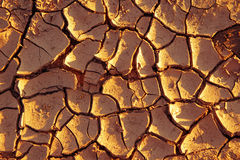 Dried out soil Royalty Free Stock Photo