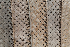 Dried palm texture Royalty Free Stock Image