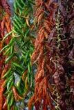Dried paprika Stock Photo
