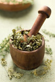 Dried parsley. Healthy aromatic herbs Royalty Free Stock Photos