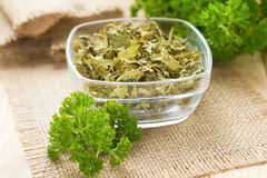 Dried parsley Royalty Free Stock Photography
