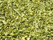 Dried Parsley Background Stock Image