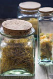 Dried pasta in jars Stock Image