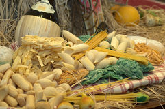 Dried Pastas. Display of an assortment of dried pastas Royalty Free Stock Photo