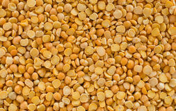 Dried pea seeds. Stock Photography