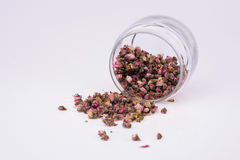 Dried Peach Blossom In Tilted Glass Jar Stock Images