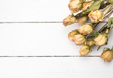 Dried peach rose flowers close up on white plank wooden backgrou Stock Images