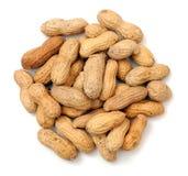 Dried peanut Royalty Free Stock Photos
