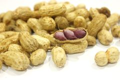 Dried peanuts in closeup. Nut nature food royalty free stock images