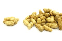Dried peanuts in closeup. Nut nature food stock photography