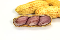 Dried peanuts in closeup Stock Image