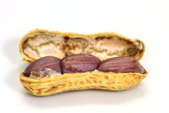 Dried peanuts in closeup Stock Images