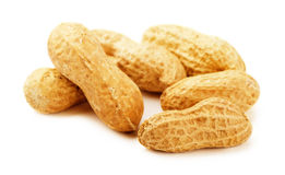 Dried peanuts Stock Photography