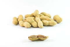 Dried peanuts. On white background Royalty Free Stock Photos