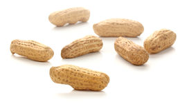 Dried Peanuts  on a white background Royalty Free Stock Photography