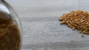 Dried peas grains stock video