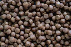 Dried pellet dog food for animal and pet care stock photography