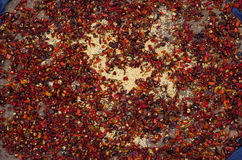 Dried pepper. Closeup of chillies or peppers left out to dry in the sun Royalty Free Stock Photos