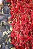 Dried pepper and eggplant Royalty Free Stock Images