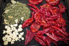 Dried pepper Royalty Free Stock Image