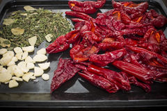 Dried pepper Stock Image