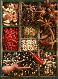 Dried peppercorns, star anise and cloves Stock Photos
