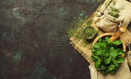 Dried peppermint in a glass jar and a bunch of fresh mint, medic. Ine herb on black background, top view stock photos