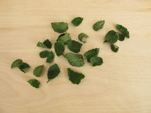 Dried peppermint leaves Stock Photography