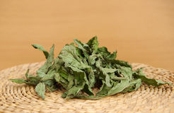 Dried peppermint Stock Images