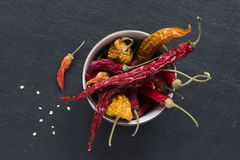 Dried Peppers Royalty Free Stock Photos