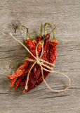 The dried peppers closeup Royalty Free Stock Photography