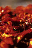 Dried peppers- Guatemala Royalty Free Stock Images