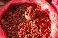 Dried peppers Royalty Free Stock Image