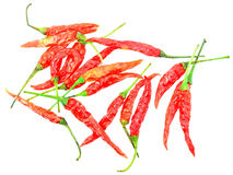 Dried peppers Stock Photography