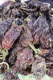Dried peppers Royalty Free Stock Photo