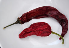Dried peppers on white Royalty Free Stock Photos