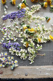 Dried perfumed flowers Royalty Free Stock Images