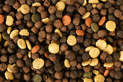 Dried pet food for dog or cat background Royalty Free Stock Image
