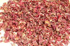 Dried petals of hibiscus Stock Photos