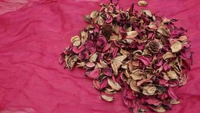 Dried petals in the house stock images