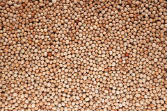 Dried pigeon peas background Royalty Free Stock Images