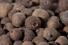Dried Pimento Berries Full Frame Ready To Use In. A Dish Royalty Free Stock Image