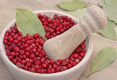 Dried pink pepper berries Stock Photography