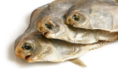 Dried piranhas Stock Photos