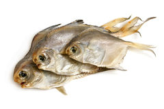 Dried piranhas Royalty Free Stock Images