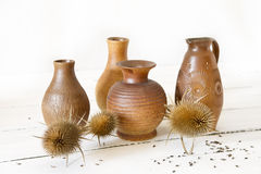 Dried plants. Vases with dried plants on a white table Stock Image