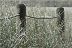 Dried poles with rope creating fence in grass Royalty Free Stock Image