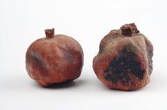 Dried Pomegranates Royalty Free Stock Photography