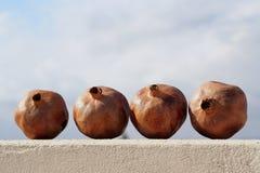 Dried Pomegranates Royalty Free Stock Image