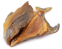 Dried pomfret fish Royalty Free Stock Photos